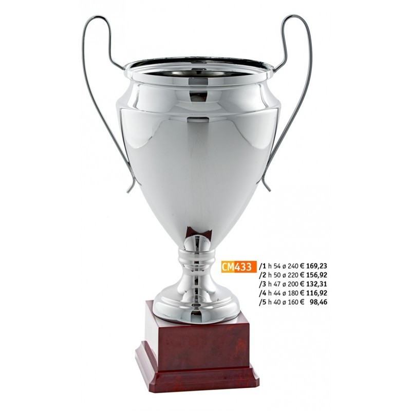 "433 CM Cup ""2015"""
