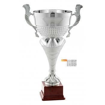 """493 CM Cup """"2015"""""""