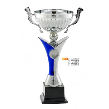 """510 CM Cup """"2015"""""""