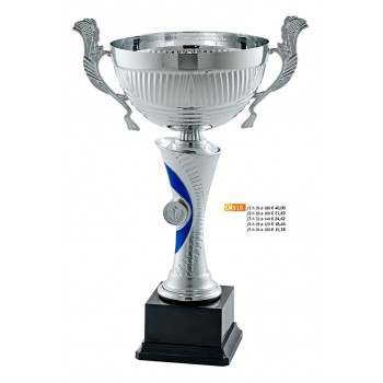 """516 CM Cup """"2015"""""""