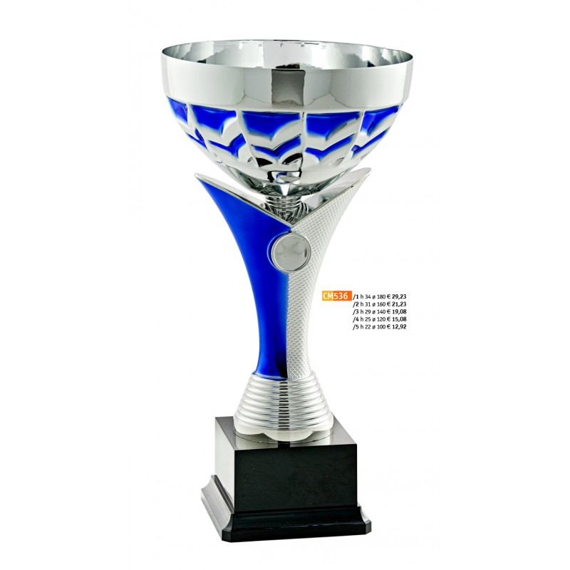 """536 CM Cup """"2015"""""""